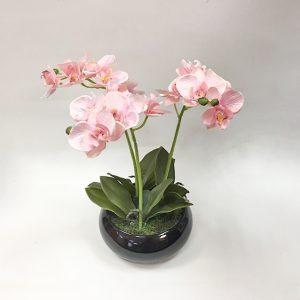 13358-orhideya-v-kashpo-n28-sm-rozovyiy