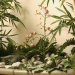 iskusstvennye-cvety-v-zimnih-sadah
