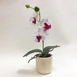 Орхидея к кашпо Н27см
