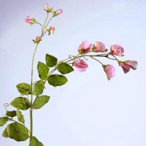 Цветы разные