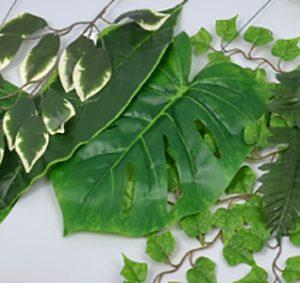 Ветки, травы, листья